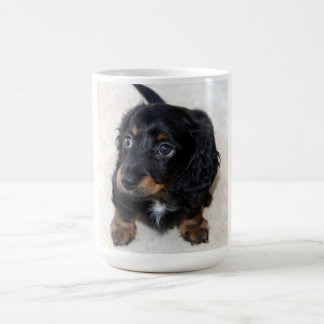 Dachshund puppy dog cute beautiful photo, gift basic white mug