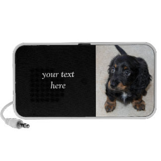 Dachshund puppy dog  cute beautiful photo, gift laptop speakers