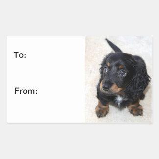 Dachshund puppy dog cute beautiful, to, from, gift rectangular sticker