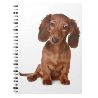 Dachshund Puppy Dog Love Notebook
