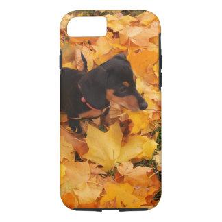 Dachshund puppy iPhone 8/7 case