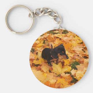 Dachshund puppy key ring