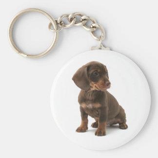 Dachshund Puppy Keychain