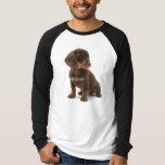 Dachshund Puppy Long Sleeve Men's T-Shirt