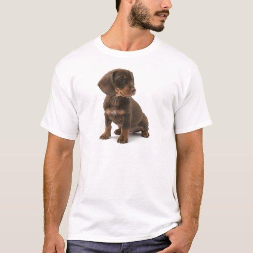 Dachshund Puppy Men's T-Shirt