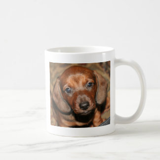 Dachshund Puppy One Coffee Mug