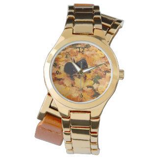 Dachshund puppy watch