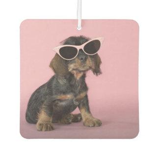 Dachshund Puppy Wearing Sunglasses Car Air Freshener