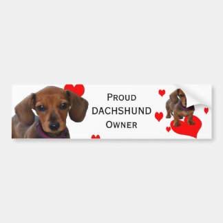 DACHSHUND Puppy with Hearts Bumper Sticker