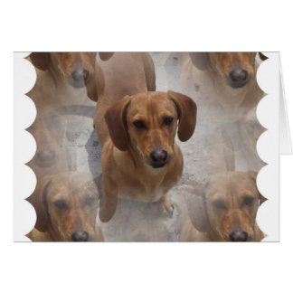 Dachshund Rescue Greeting Card