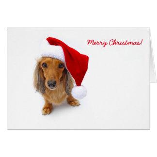 dachshund santa card