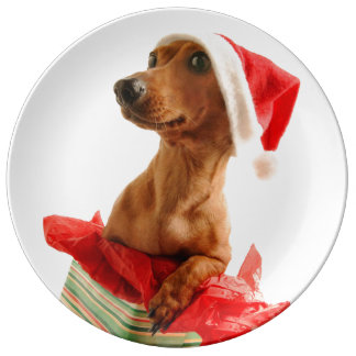 Dachshund santa - santa dog - dog gifts plate