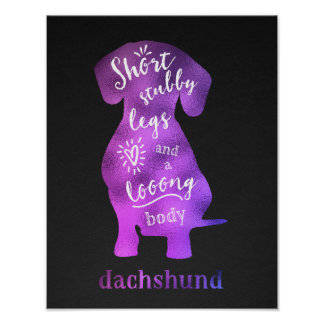 Dachshund - Short Stubby Legs and a Long Body Poster