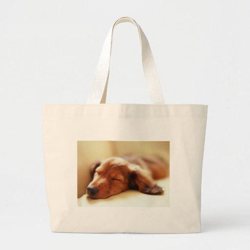 Dachshund sleeping canvas bag