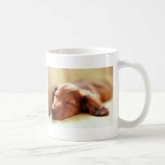 Dachshund sleeping basic white mug