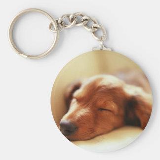 Dachshund sleeping key ring