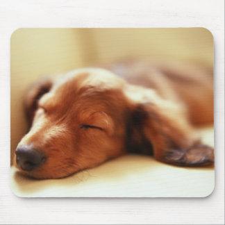 Dachshund sleeping mouse mat