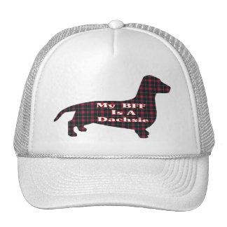 Dachshund Smooth BFF Hat