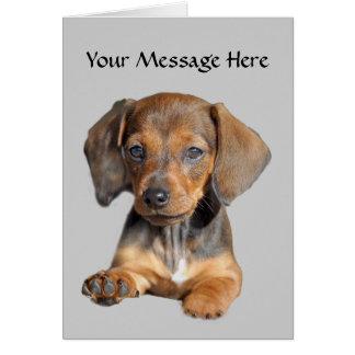 Dachshund So Cute Greeting Card