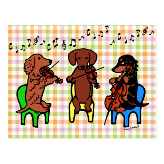 Dachshund String Trio Postcard
