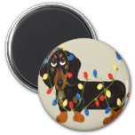 Dachshund Tangled In Christmas Lights Blk/Tan