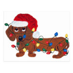 Dachshund Tangled In Christmas Lights (Red) Postcard