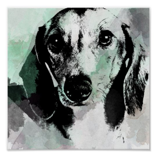 Dachshund Watercolor Print. Poster