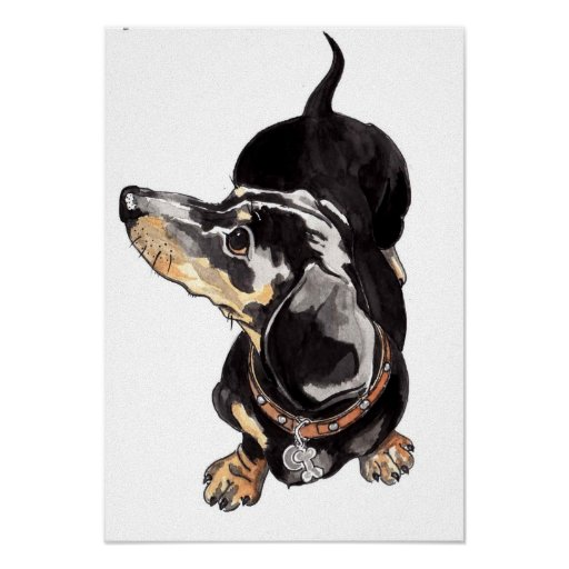 Dachshund watercolour painting by Annabel Tarrant Poster