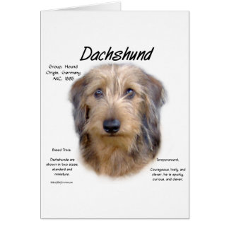 Dachshund (wirehair) History Design Greeting Card