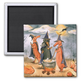 Dachshund Witches Square Magnet