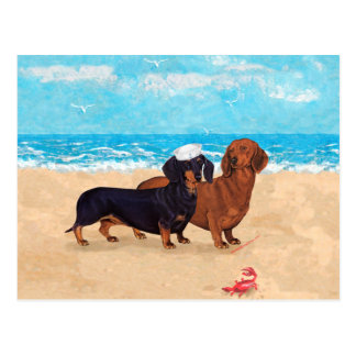 Dachshunds at the Beach Postcard