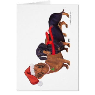 Dachshunds Christmas Greeting Cards