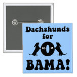 dachshunds for Obama Pin