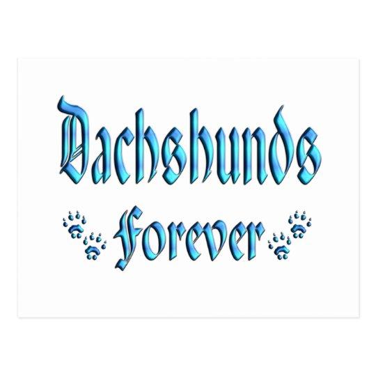 Dachshunds Forever Postcard