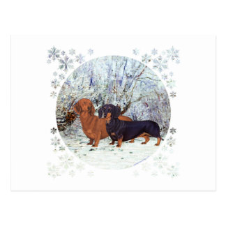 Dachshunds in the Snow Postcard