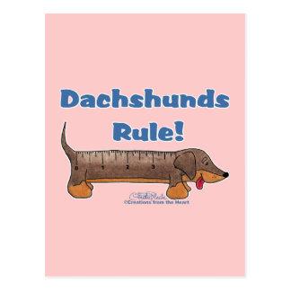 Dachshunds Rule Post Card