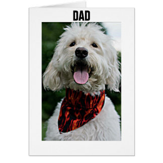 DAD-FOR YOUR BIRTHDAY I GET DRESSED JUST FOR YOU GREETING CARD