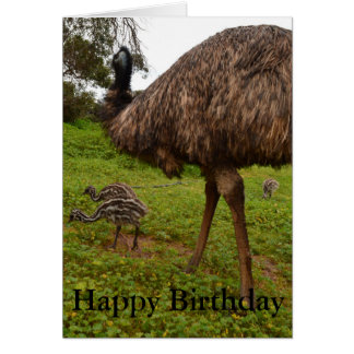 Daddy And Baby Emu Chicks, Birthday Greeting Card. Card