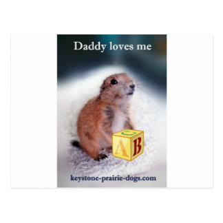 """Daddy loves me"" baby clothes Postcard"
