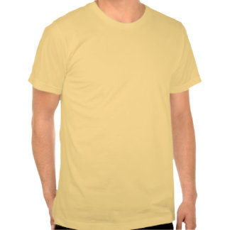 DADGAD Acoustic Guitar Logo T Shirts