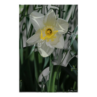Daffodil 2015 poster
