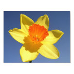 Daffodil Against Blue Sky Personalised Invite