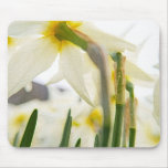 daffodil audience mouse mat