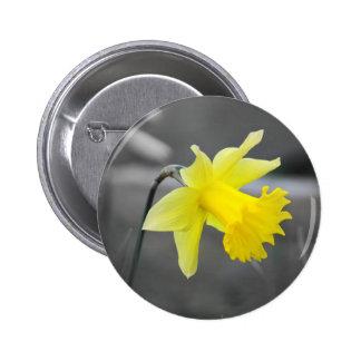 Daffodil Pins