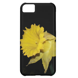 Daffodil iPhone 5C Cases