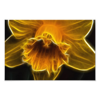 Daffodil Flower Fractal Photographic Print