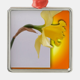 Daffodil flower out the frame christmas ornament