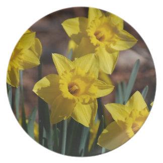 Daffodil Garden Party Plates