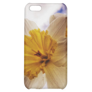 Daffodil Case For iPhone 5C