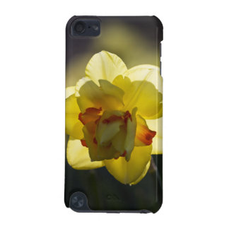 Daffodil iPod Touch Speck Hard Shell Case iPod Touch (5th Generation) Cover